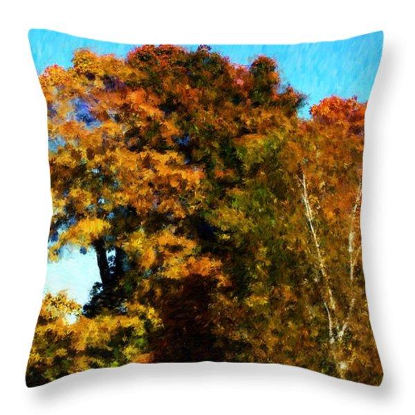 Autumn Leaves Throw Pillow by David Lane