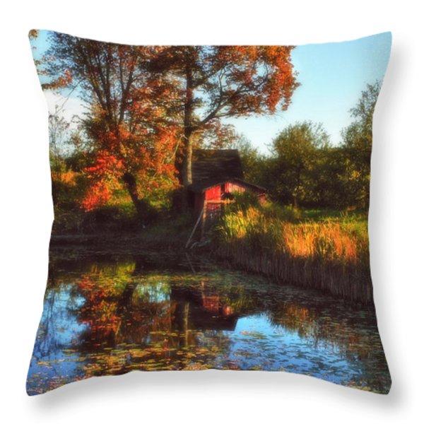 Autumn Palette Throw Pillow by Joann Vitali
