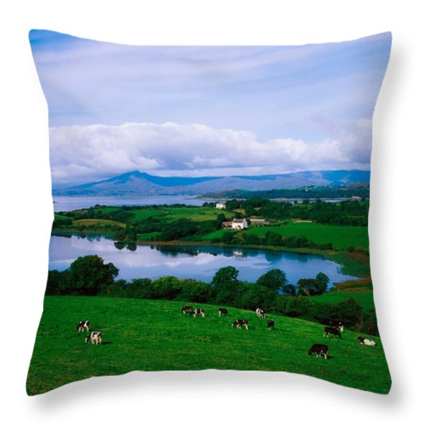 Bantry Bay, Co Cork, Ireland Throw Pillow by The Irish Image Collection