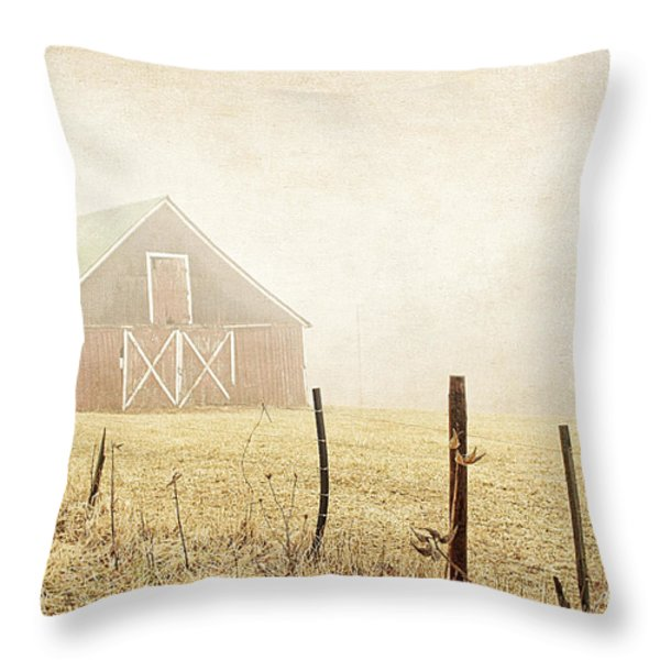 Blue Ridge Farm Throw Pillow by Darren Fisher