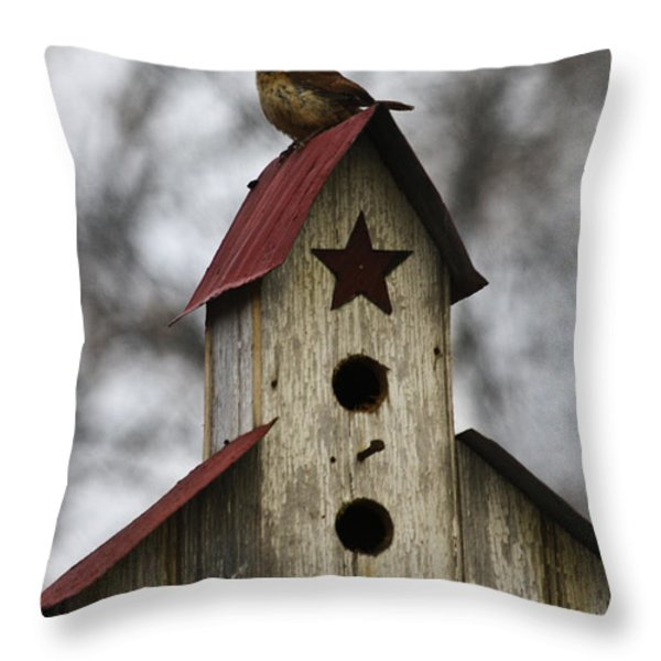 Carolina Wren Throw Pillow by Teresa Mucha