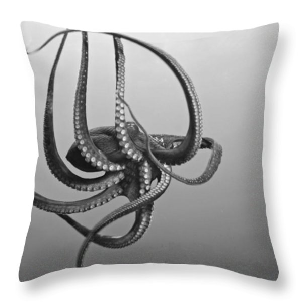 Day Octopus Throw Pillow by Dave Fleetham - Printscapes