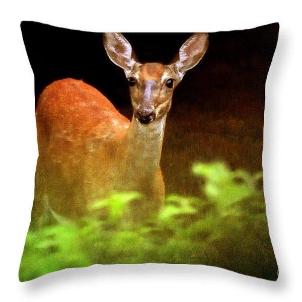 Doe Eyes Throw Pillow by Lois Bryan