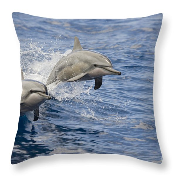 Dolphins Leaping Throw Pillow by Dave Fleetham - Printscapes