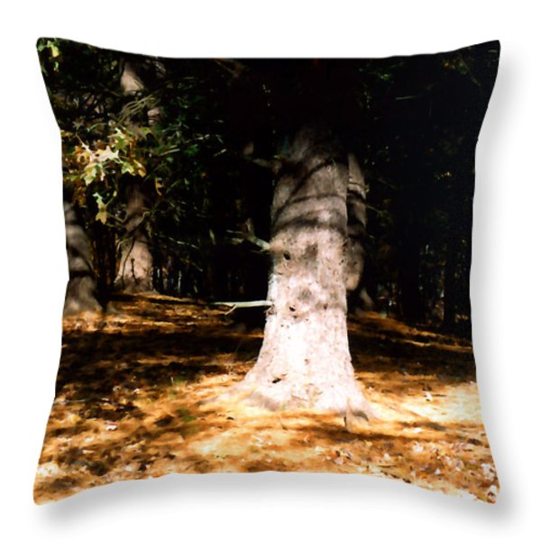 Forest Entrance Throw Pillow by Paul Sachtleben