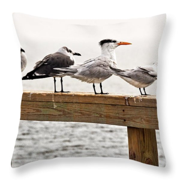 Grounded By Fog Throw Pillow by Christopher Holmes