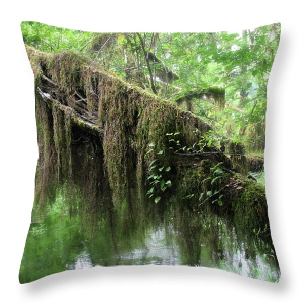 Hall Of Mosses - Hoh Rain Forest Olympic National Park Wa Usa Throw Pillow by Christine Till