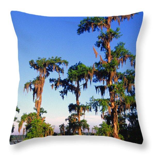 Lake Martin Cypress Swamp Throw Pillow by Thomas R Fletcher