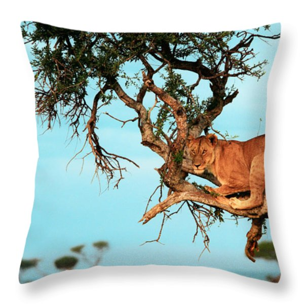 Lioness In Africa Throw Pillow by Sebastian Musial