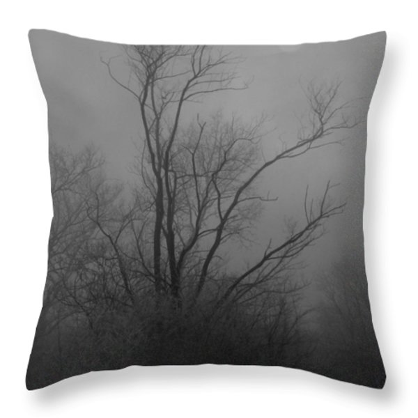 Nebelbild 13 - Fog Image 13 Throw Pillow by Mimulux patricia no