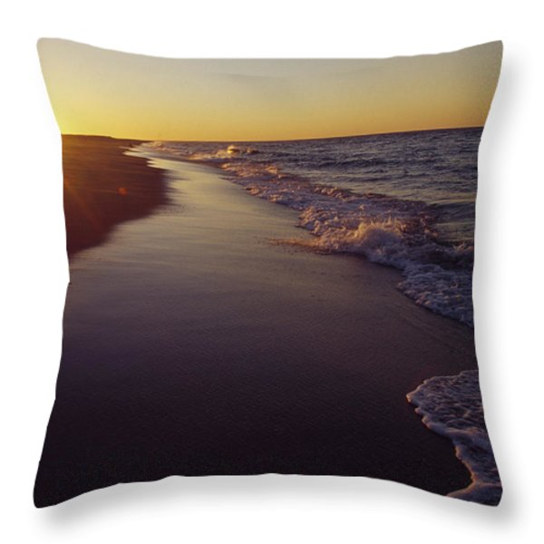 Picture 005 Throw Pillow by pdil