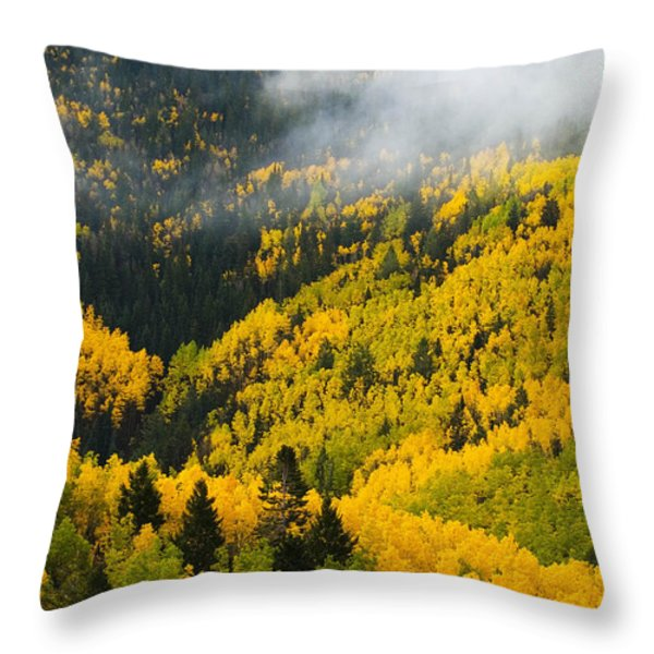 Quaking Aspen And Ponderosa Pine Trees Throw Pillow by Ralph Lee Hopkins