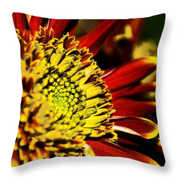 Red Throw Pillow by Svetlana Sewell