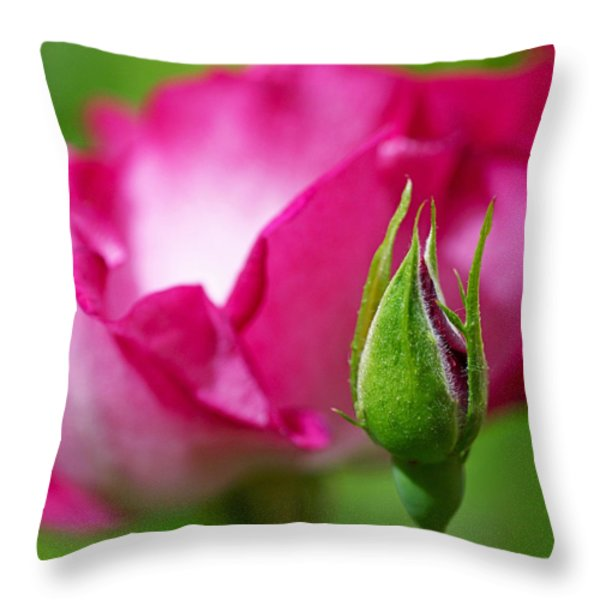 Rosebud Throw Pillow by Rona Black
