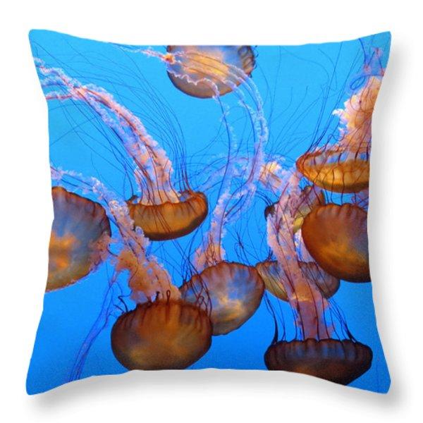 Sea Nettles Ballet 1 Throw Pillow by Diane Wood