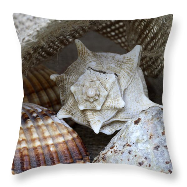 Seashells Throw Pillow by Frank Tschakert