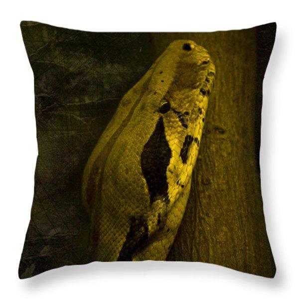 Snake Throw Pillow by Svetlana Sewell
