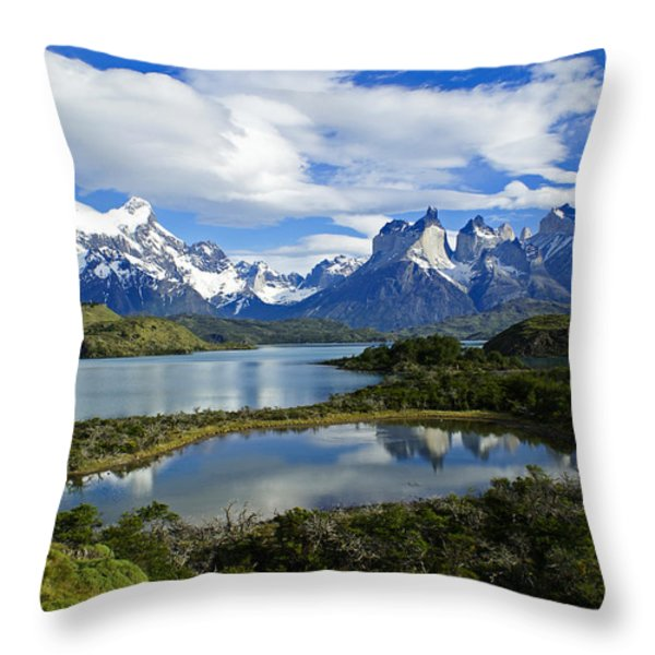 Springtime in Patagonia Throw Pillow by Michele Burgess