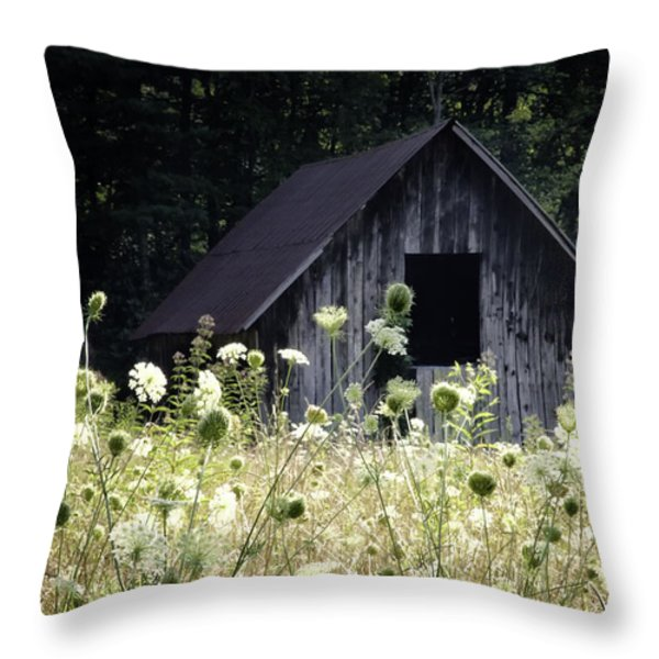 Summer Barn Throw Pillow by Rob Travis