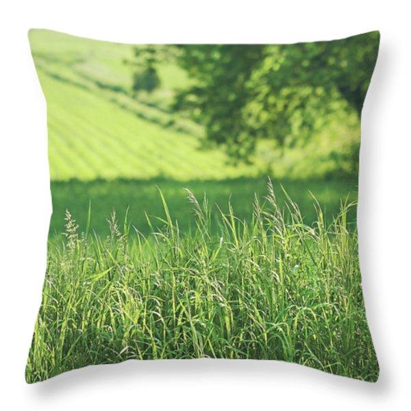 Summer Fields Of Green Throw Pillow by Sandra Cunningham