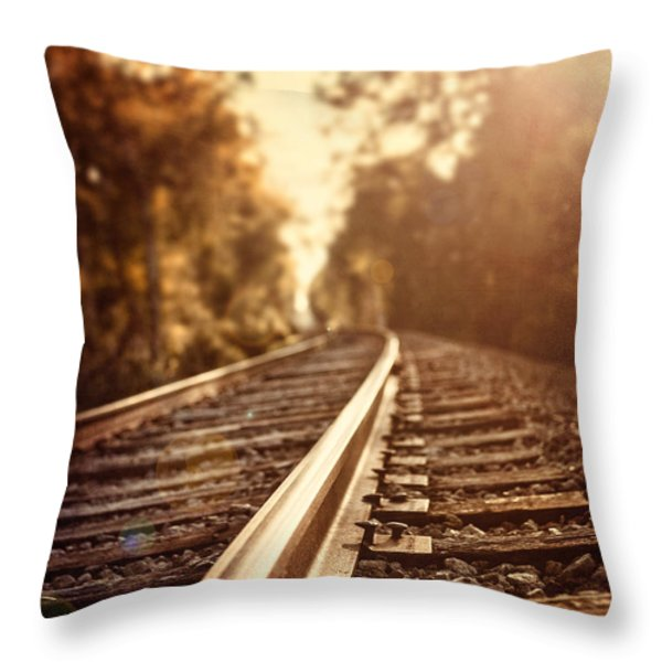 The Journey Throw Pillow by Lisa Russo
