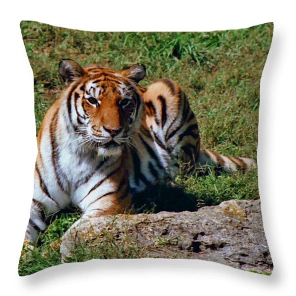 Tiger II Throw Pillow by Gary Adkins