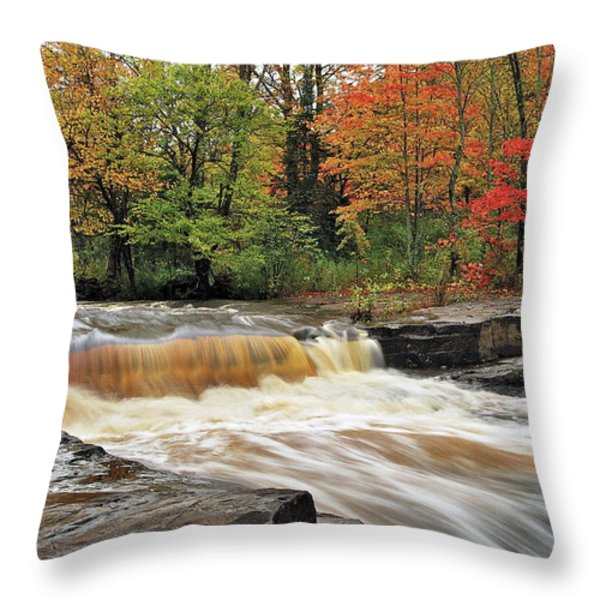 Unnamed Falls Throw Pillow by Michael Peychich