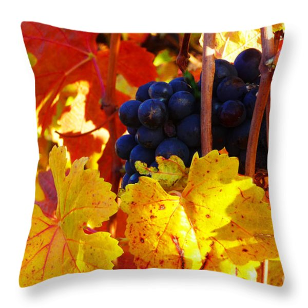 Vineyard 16 Throw Pillow by Xueling Zou