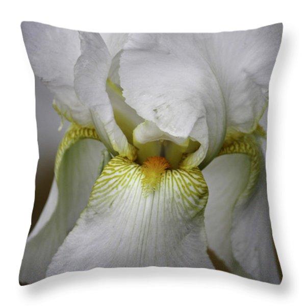 White Iris Throw Pillow by Teresa Mucha