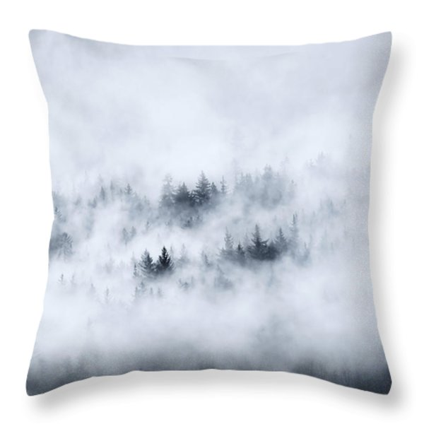 Winter Throw Pillow by Mike  Dawson