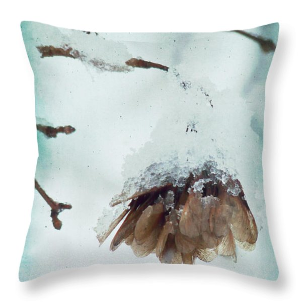 Wintertime Throw Pillow by Angela Doelling AD DESIGN Photo and PhotoArt