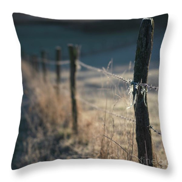 Wooden Posts Throw Pillow by Bernard Jaubert