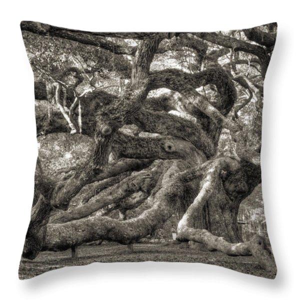 Angel Oak Live Oak Tree Throw Pillow by Dustin K Ryan