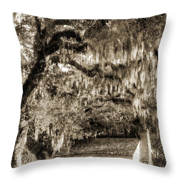 19th Century Slave house Throw Pillow by Dustin K Ryan
