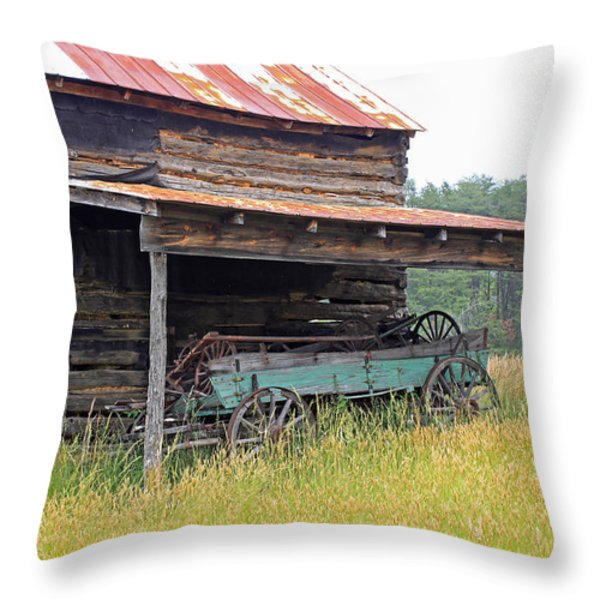 Another Time Throw Pillow by Suzanne Gaff