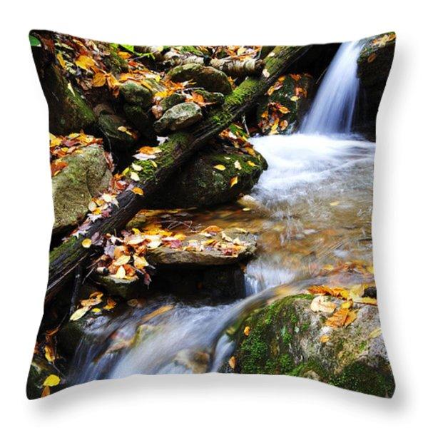 Autumn Mountain Stream Throw Pillow by Thomas R Fletcher