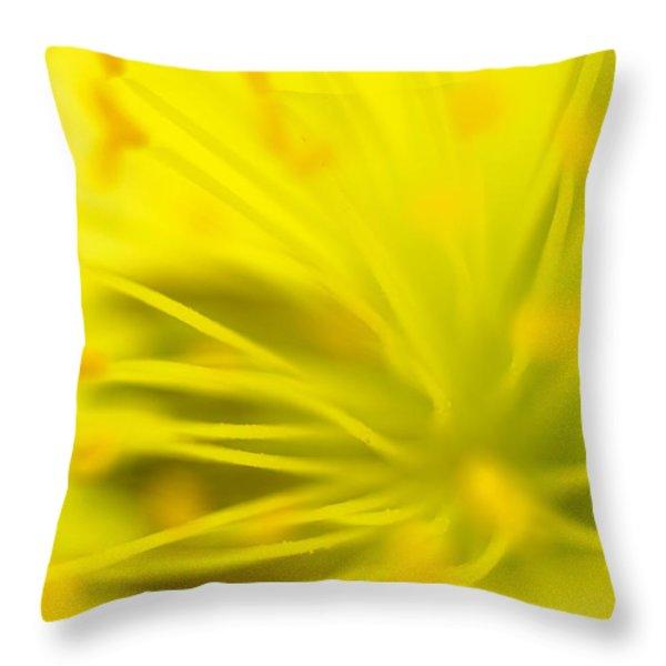 California Poppy Throw Pillow by Silke Magino