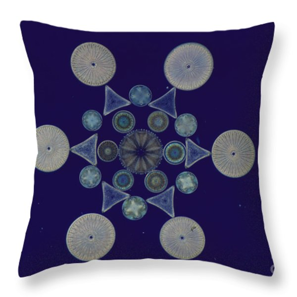 Diatom Arrangement Throw Pillow by M. I. Walker