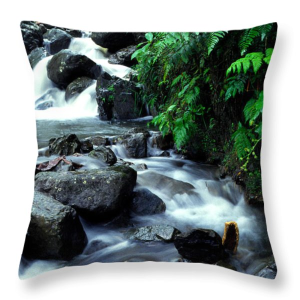 El Yunque Waterfall Throw Pillow by Thomas R Fletcher