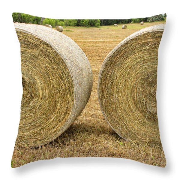 2 Freshly Baled Round Hay Bales Throw Pillow by James BO  Insogna