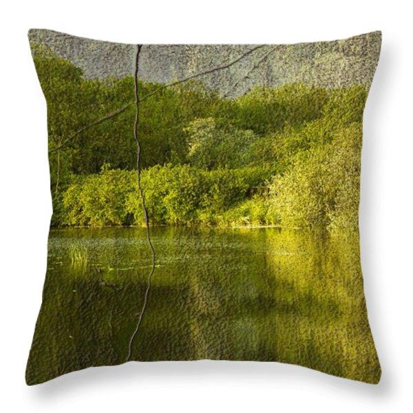 Landscape Throw Pillow by Svetlana Sewell