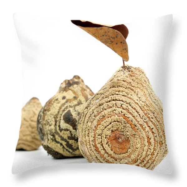 Quinces Throw Pillow by BERNARD JAUBERT
