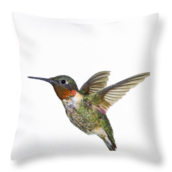 Ruby-throated Hummingbird Archilochus Throw Pillow by Thomas Kitchin & Victoria Hurst