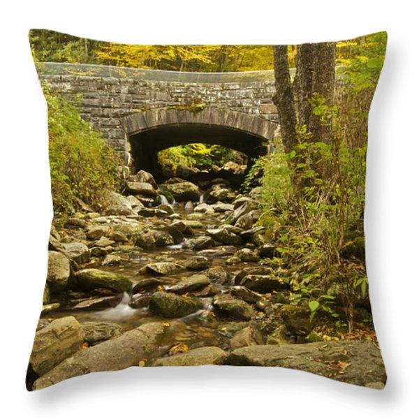 Stone Bridge 6063 Throw Pillow by Michael Peychich