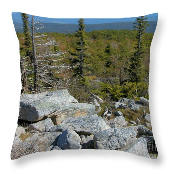 Dolly Sods Wilderness Throw Pillow by Thomas R Fletcher