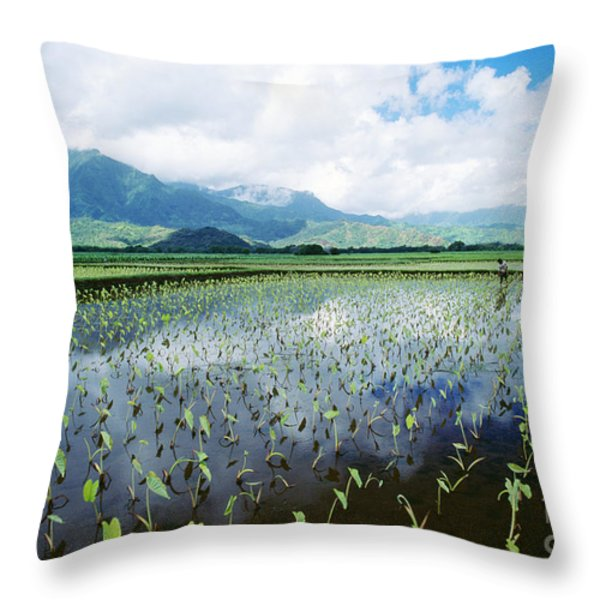 Kauai, Wet Taro Farm Throw Pillow by Bob Abraham - Printscapes