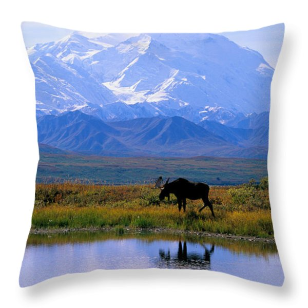 Denali National Park Throw Pillow by John Hyde - Printscapes