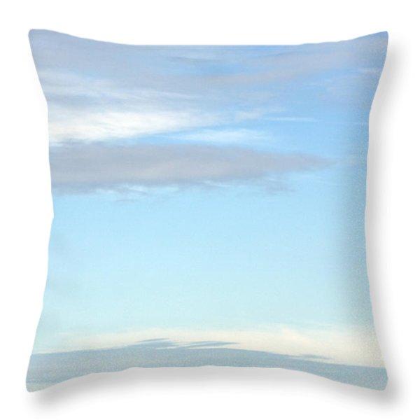 F16 Throw Pillow by Angel  Tarantella