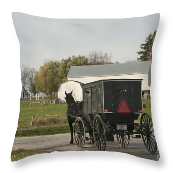 Amish Buggy Throw Pillow by David Arment