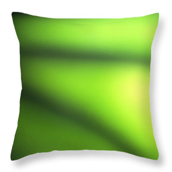 Abstract Throw Pillow by Tony Cordoza